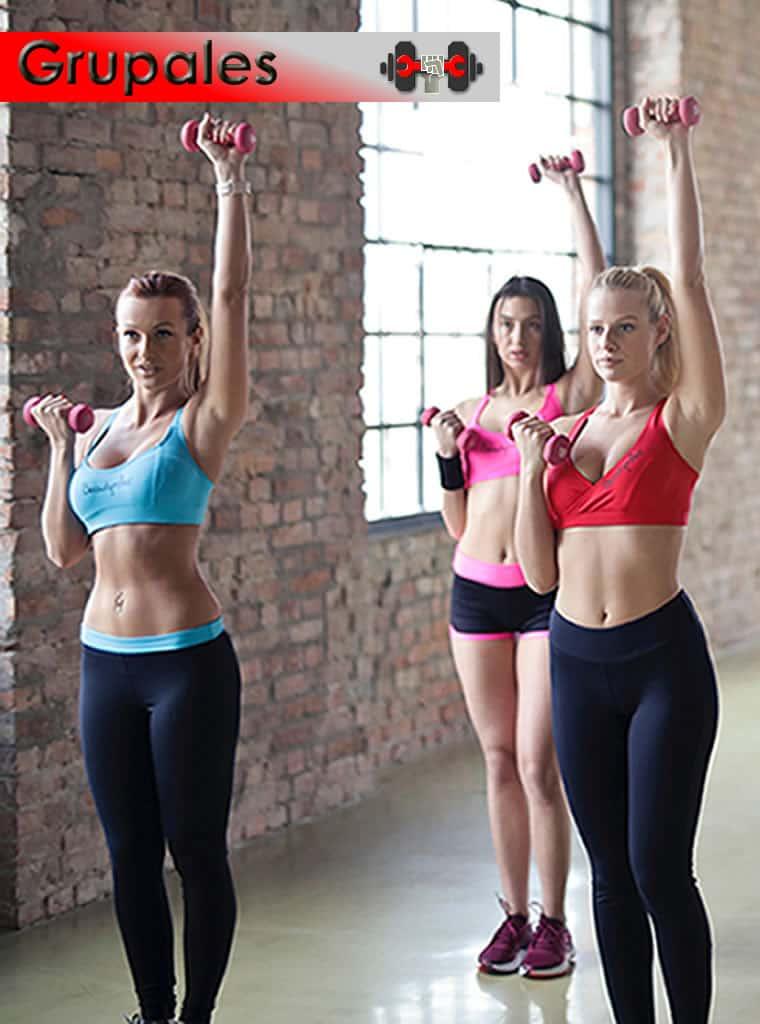 Catalogo de accesorios fitness para clases grupales (step, guarda steps, pelota gigante, peloton, cilindro cacahuete, camas elásticas, colchoneta elástica exagonal)