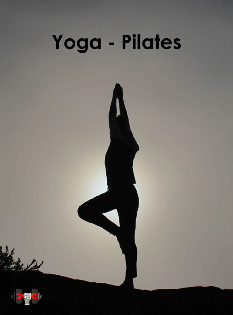 Catálgo de accesorios para pilates y yoga (colchoneta, esterilla, manta de yoga, toalla de yoga, bloster, zafu, colchoneta tpe, estanterias, ladrillo yoga, cuñas yoga, silla de inversion, correas yoga, bolas de pilates, aro pilates, ruedas yoga, columpio yoga(